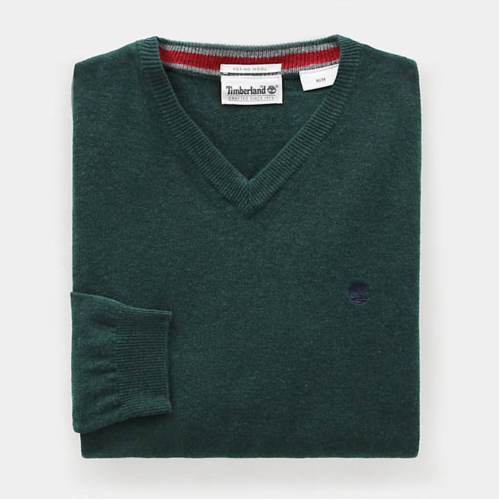 Merino V Neck Sweater for Men in Green-