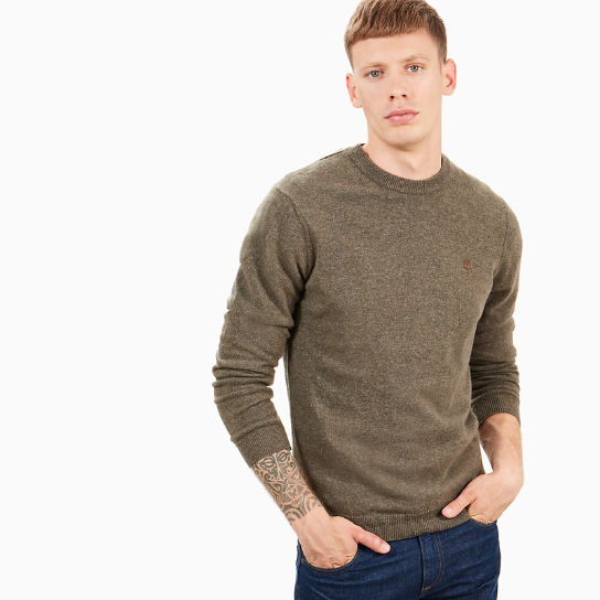 dab88d343d28b Merino Crew Neck Sweater for Men in Green