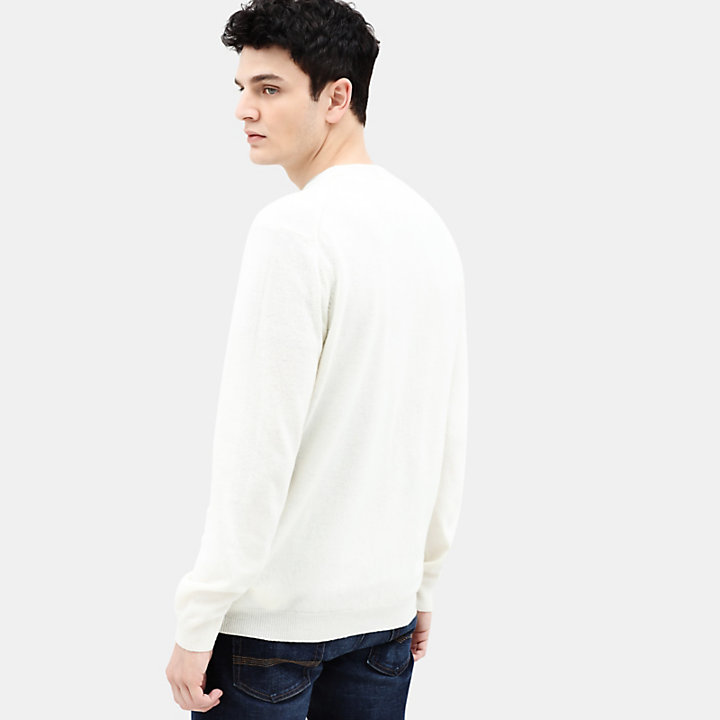 Merino Crew Neck Sweater for Men in Cream-