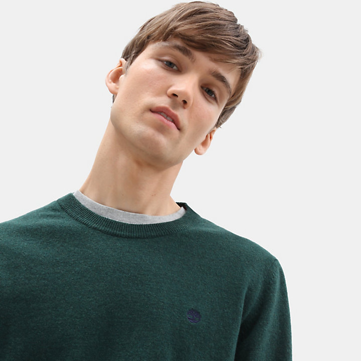 Merino Crew Neck Sweater for Men in Green-