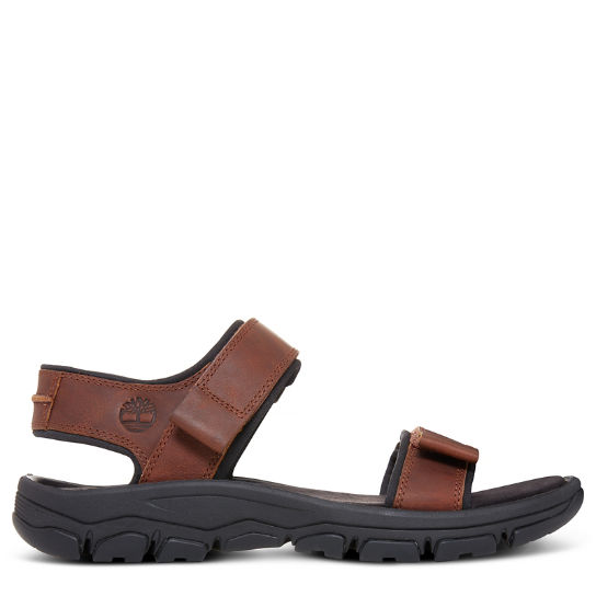 Men's Roslindale Sandal Brown | Timberland