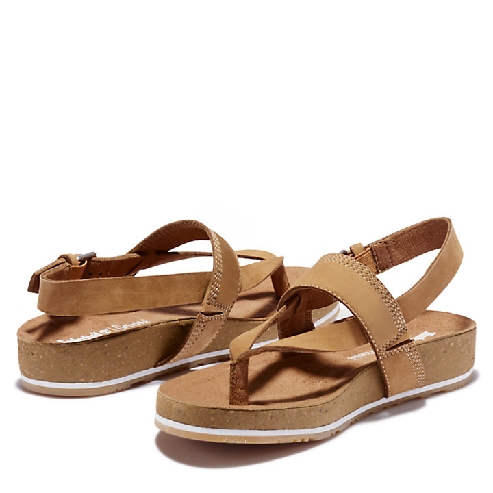 Women's Malibu Waves Thong Sandal Brown-