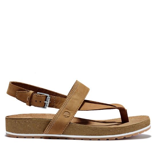 Women's Malibu Waves Thong Sandal Brown | Timberland
