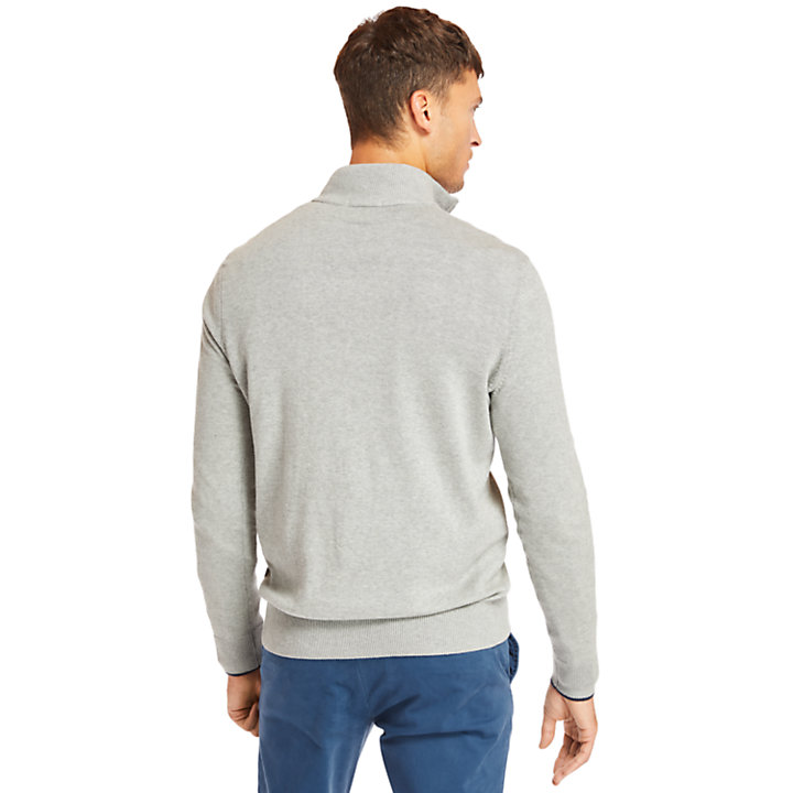 Williams River Half-Zip Sweater for Men in Grey-