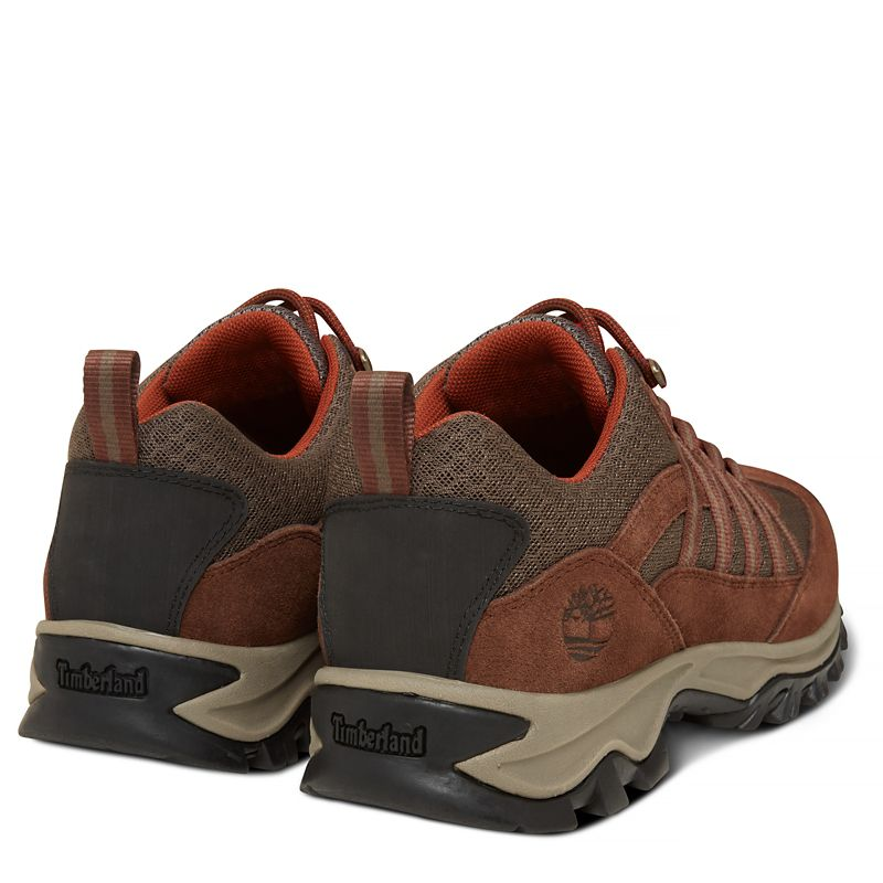 Timberland - mt. maddsen lite sneaker  marrón - 4