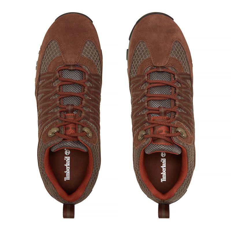 Timberland - mt. maddsen lite sneaker  marrón - 5