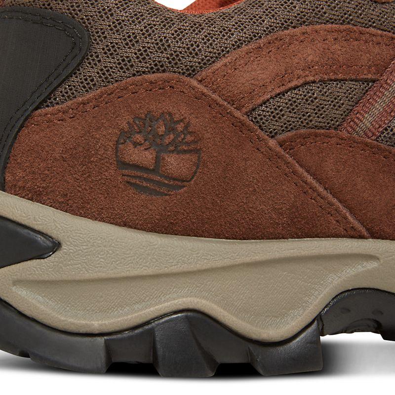 Timberland - mt. maddsen lite sneaker  marrón - 8