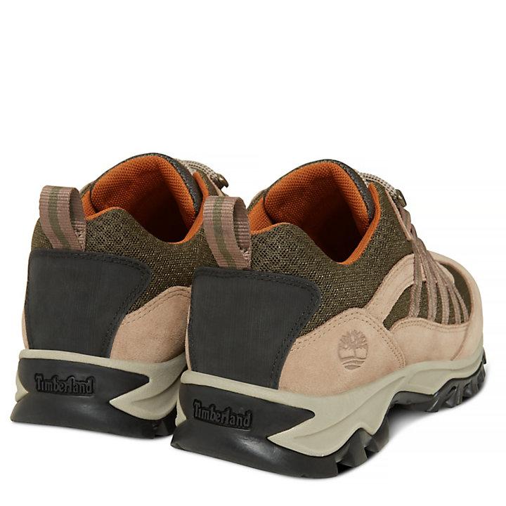Mt. Maddsen Lite Sneaker Homme écrues-