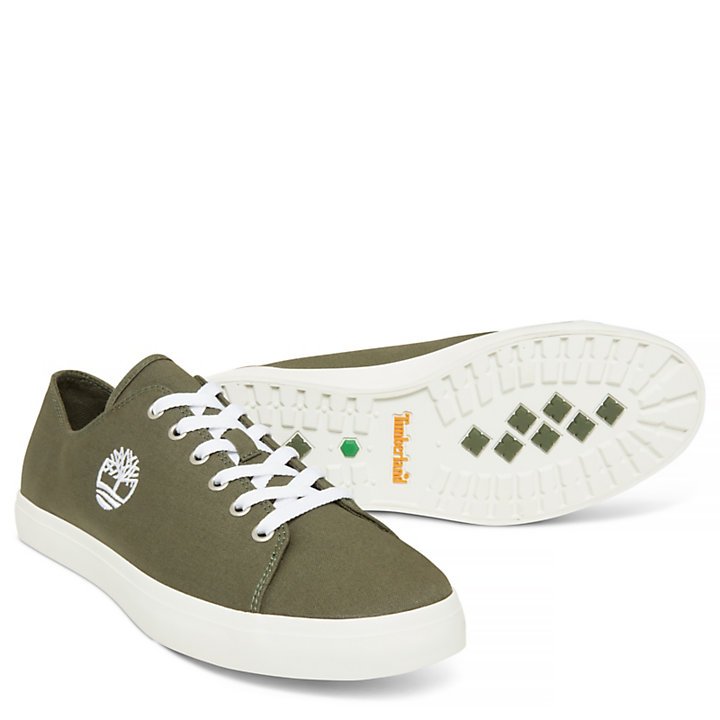 Union Wharf Trainer for Men in Green-