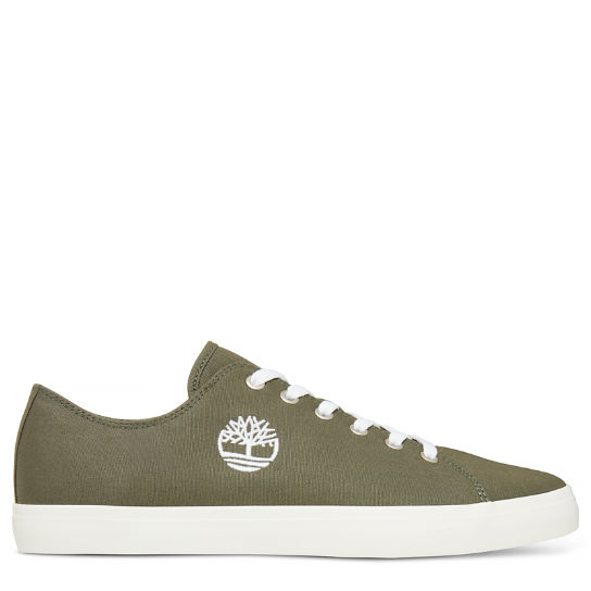 Newport Bay Lace-Up Oxford Shoe Uomo Verde | Timberland