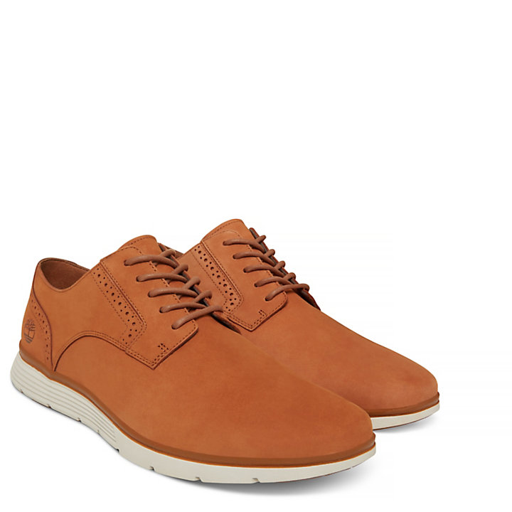 Franklin Park Brogue Oxford Marrón Hombre-