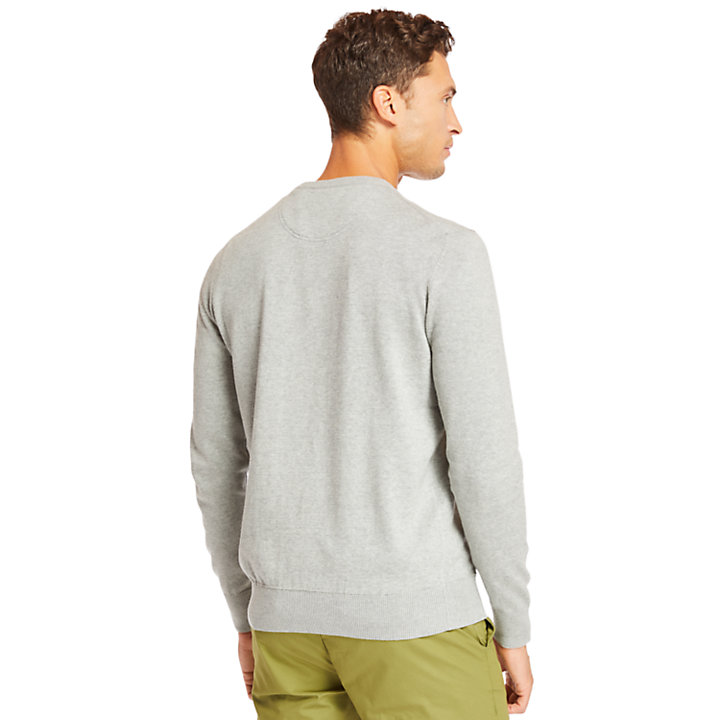 Pull en coton Williams River pour homme en gris-
