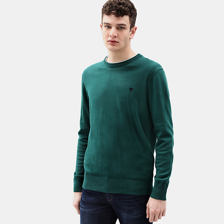 Williams River Cotton Sweater for Men in Green-