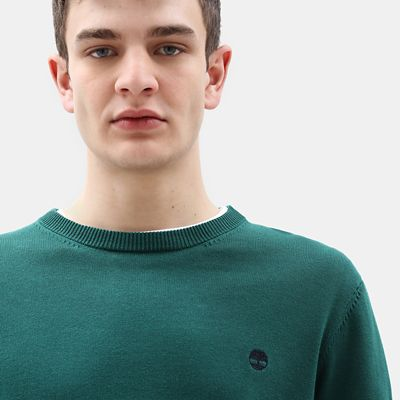 Williams+River+Cotton+Sweater+for+Men+in+Green