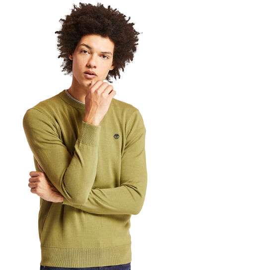 Williams River Cotton Sweater for Men in Green | Timberland