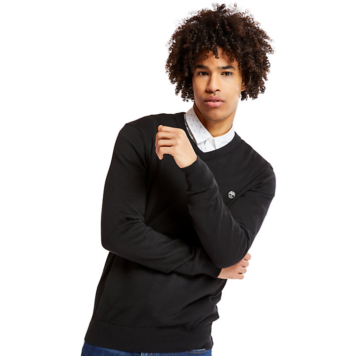 Williams River V-Neck Sweater for Men in Black-