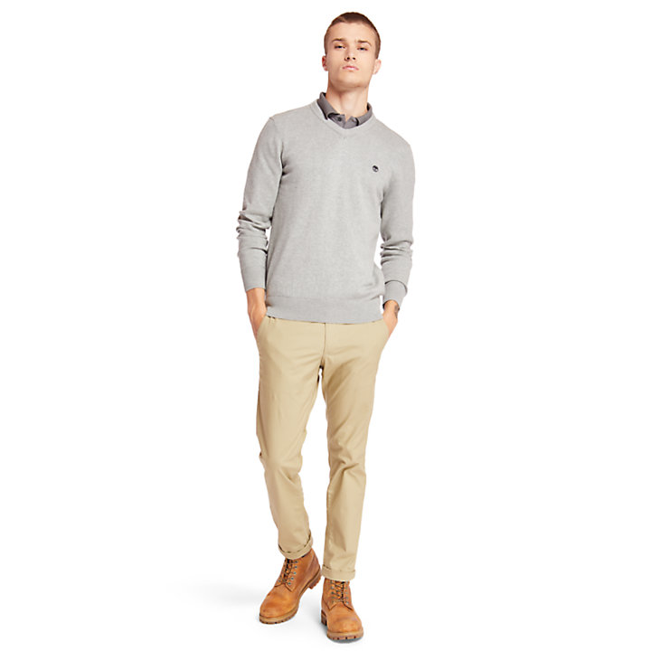Williams River V Neck Sweater for Men in Grey-