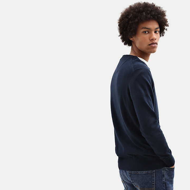 Williams River Sweater met V-hals voor Heren in blauw-