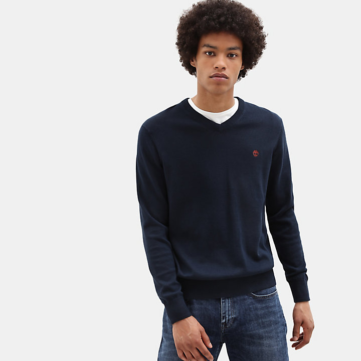 Williams River V Neck Sweater for Men in Blue-