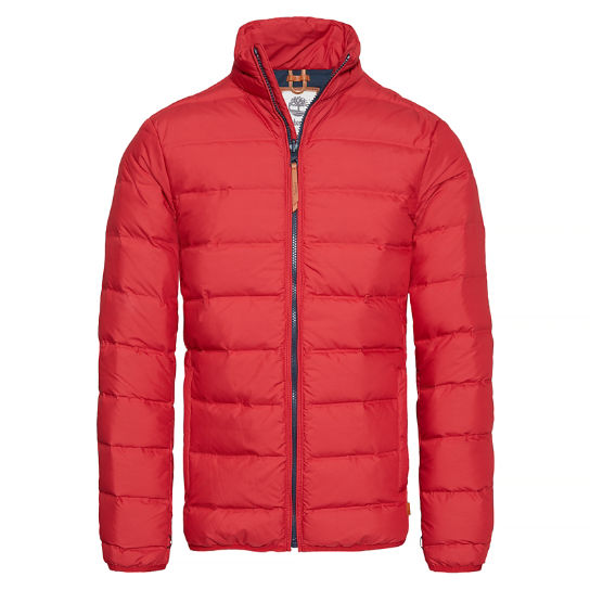 Bear Head Jacket Homme rouge | Timberland