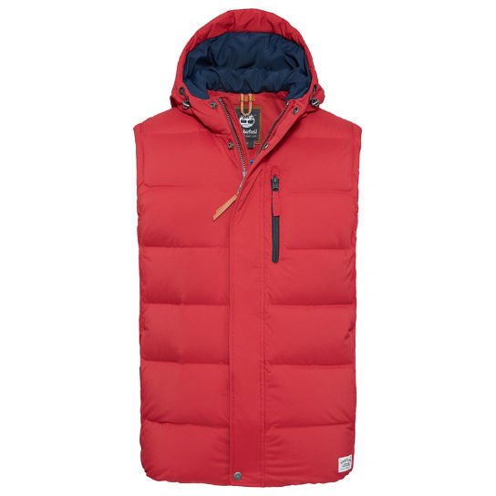 Goose Eye Parka Homme rouge | Timberland