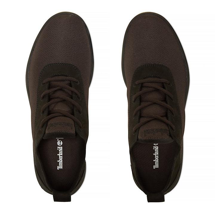 Men's Flyroam Oxford Shoe Black-