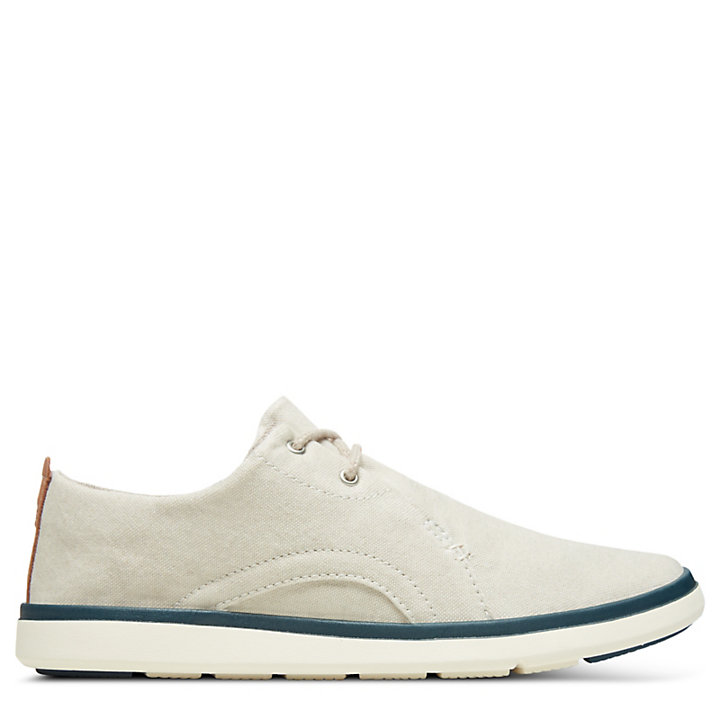 Junior Gateway Pier Oxford Shoe Beige | Timberland