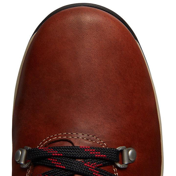 1978 Hiker Boot for Men in Brown-