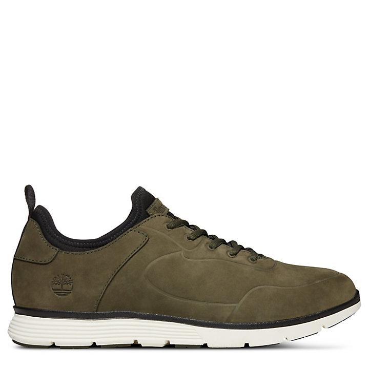 neuer Stil von 2019 am besten einkaufen Wert für Geld Killington Sneaker für Herren in Grün | Timberland