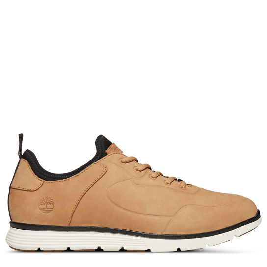 Killington Sneaker voor Heren in Beige | Timberland