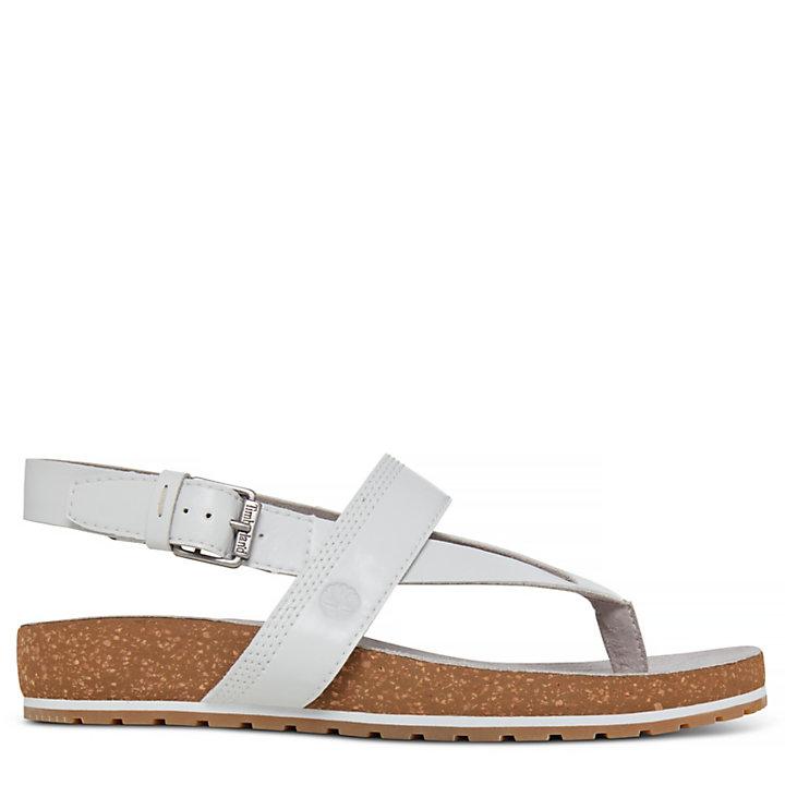Women's Malibu Waves Thong Sandal White-