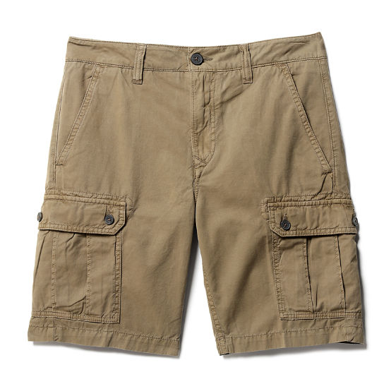 Webster Lake Cargo Shorts Caqui Hombre | Timberland
