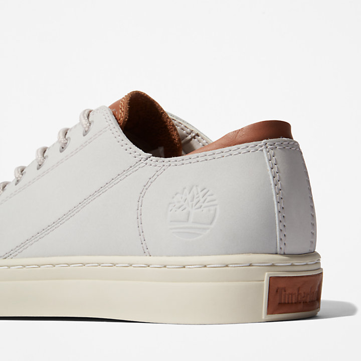 Adventure 2.0 Cupsole Oxford for Men in Light Grey-