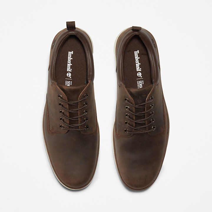 Bradstreet Leather Sneaker for Men in Dark Brown-