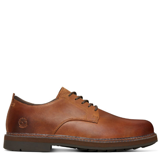 Squall Canyon Oxford for Men in Dark Brown | Timberland