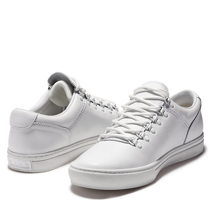 Adventure 2.0 Cupsole Alpine Sneaker for Men in White-
