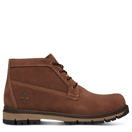 Radford Extra Warm Chukka for Men in Brown | Timberland