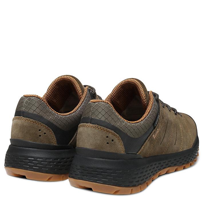 Parker Ridge GORE-TEX® Sneaker for Men in Dark Green-