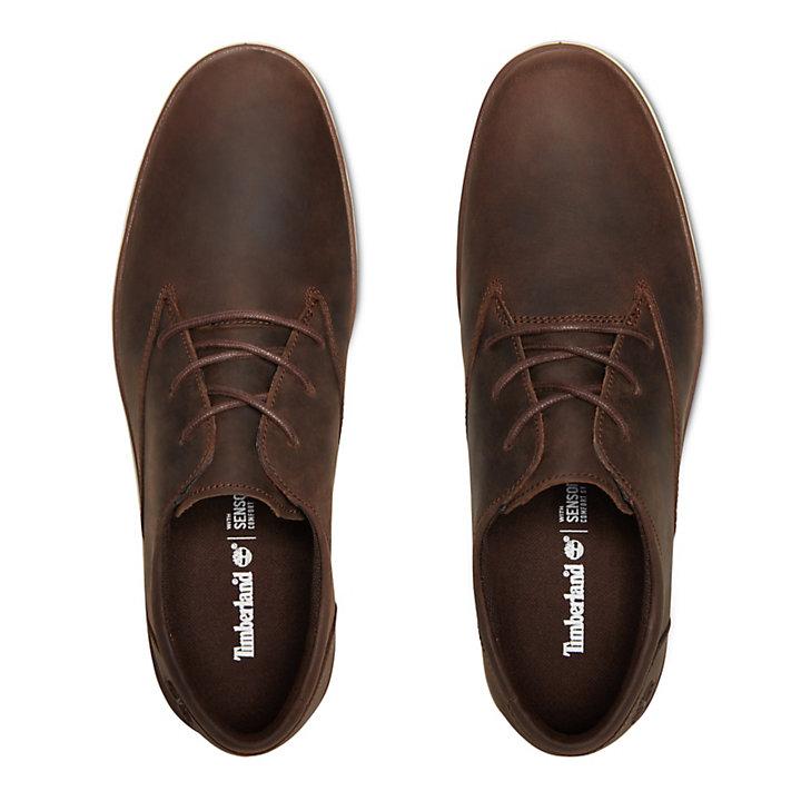 Bradstreet Plain Toe Oxford for Men in Dark Brown-