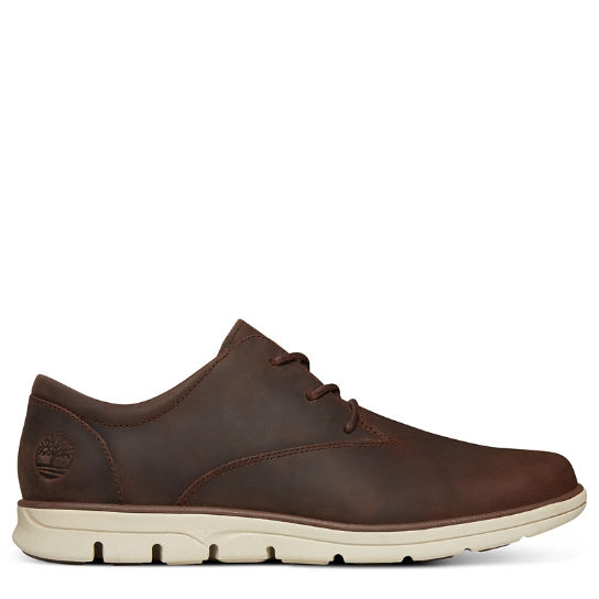 Bradstreet Plain Toe Oxford for Men in Dark Brown | Timberland