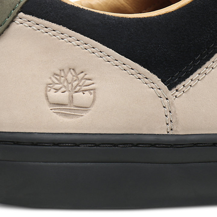 Adventure 2.0 Cupsole Sneaker for Men in Beige/Green-
