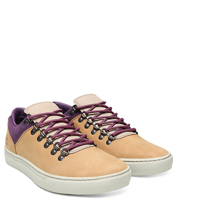 Adventure 2.0 Cupsole Sneaker for Men in Yellow/Purple-