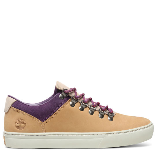 Adventure 2.0 Cupsole Sneaker for Men in Yellow/Purple | Timberland