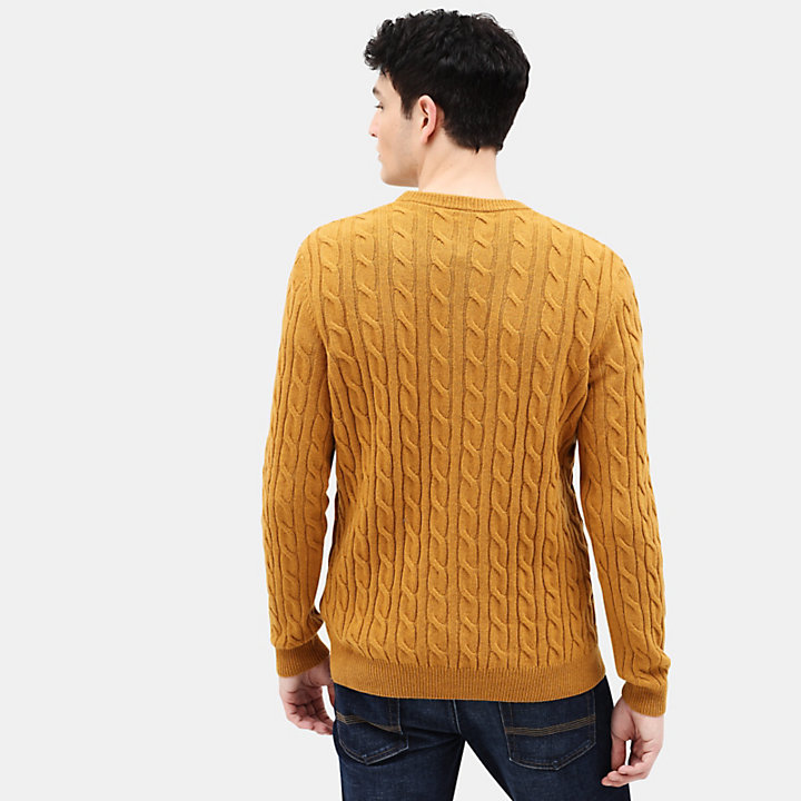 Phillips Brook Strickpullover für Herren in Gelb-
