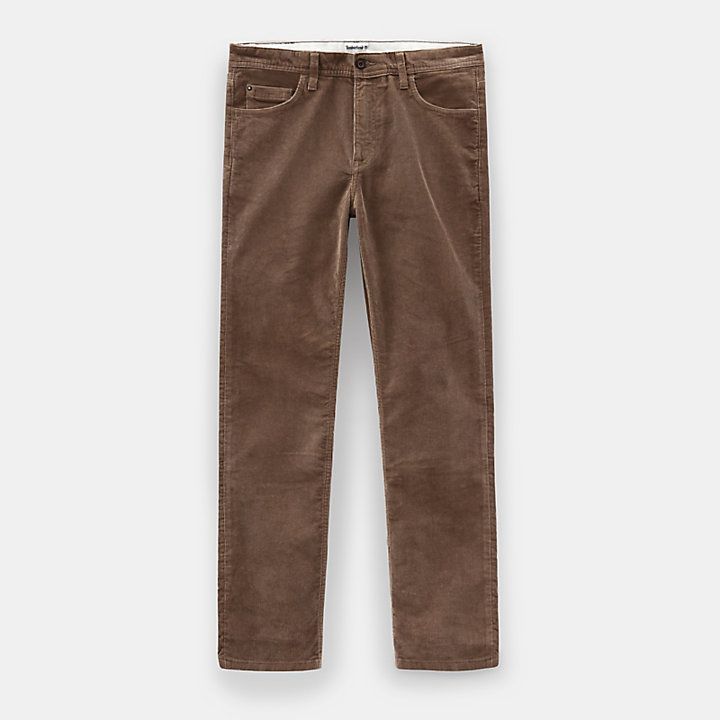Squam Lake Corduroy Broek voor Heren in beige-