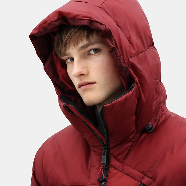 Neo Summit Jacket for Men in Dark Red-