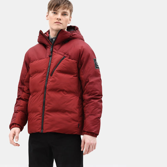 Neo Summit Jacket for Men in Dark Red | Timberland