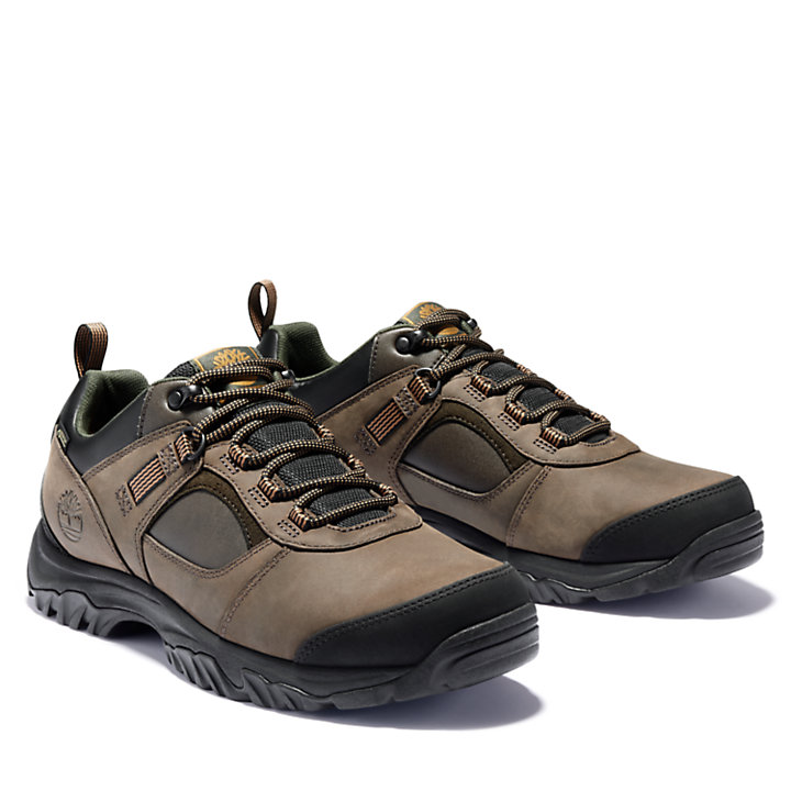 Scarponcino da Trekking da Uomo Mt. Major GORE-TEX® in marrone-