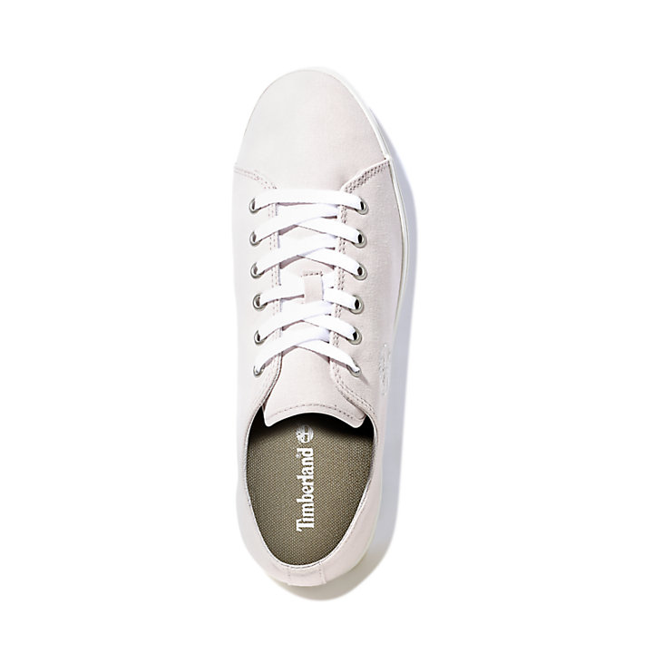 Union Wharf Trainer for Men in Pale Grey-
