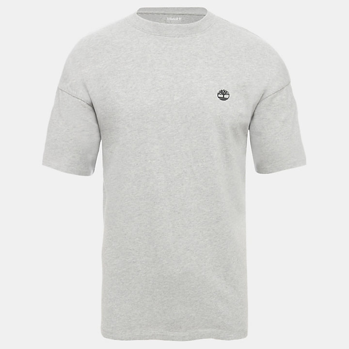Organic Cotton T-Shirt for Men in Grey-